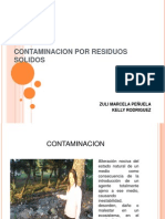 Contaminacion Por Residuos Solidos