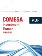 COMESA Investment Opportunities