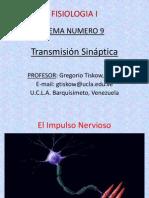 sinapsis electrica y quimica