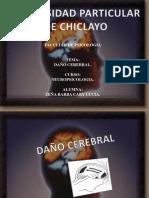 neuropsicologia DAÑO CEREBRAL