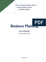Business Plaining.liviu MORARUpdf