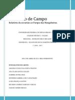 Relatório de Campo