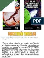 611-Aassis Sustentabilidade Web