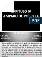 CAPÍTULO IV.pptx