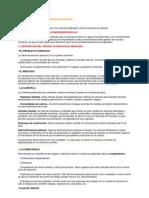Plan de Negocio Limpieza-mercado Clientes Competencia