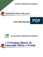 1.0 Principios de Comutação Pública e Privada