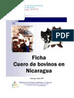 Ficha de Cuero