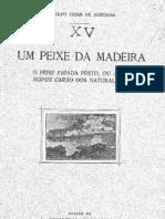 1925-acnoronha-peixe espada