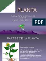 LA_PLANTA[1]