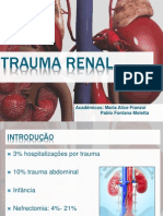 Trauma Renal (1)