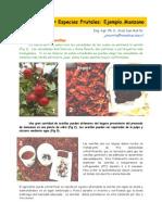 Manual Frutales[Manzanos]