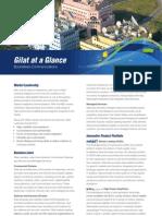 Gilat at a Glance Brochure 2012-08-16
