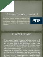 Uniones de carácter marital
