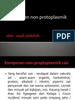 Non Protoplasmik