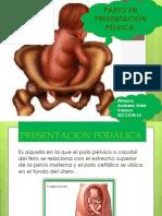 Andrade Vidal Vanesa Seccion16
