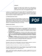RECOMENDACIONES PARA LA REDACCIÓN  DE INFORMES Y REPORTES ESCOLARES