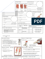 lab chapter 9 muscle fatigue and atp production answer key