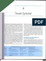 TecidoEpitelial