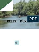 Delta Dunarii - prezentare pentru copii