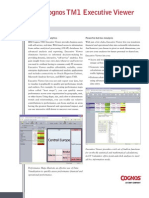 fs_executive_viewer.pdf