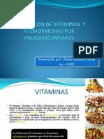 PRODUCCIÓN DE VITAMINAS  Y FITOHORMONAS POR MICROORGANISMOS.pptx