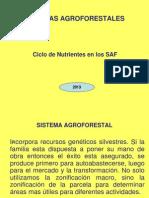 SISTEMAS AGROFORESTALES-vzg