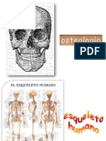 3esqueleto2010-100421214232-phpapp02