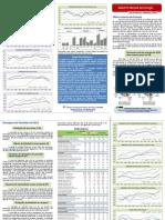 Boletim Mensal de Energia - Novembro 2012