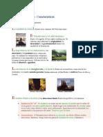 El Romanticismo espanol.doc