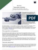 100981 13-03-26 Teamziele Erreichen PDF-Vorlage