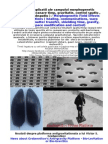Morphogenetic Field Effects and Applications