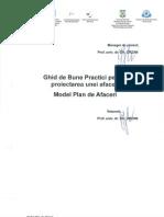 27 - A.2.2. Ghid de Bune Practici Pentru Proiectarea Unei Afaceri - Model Plan de Afaceri