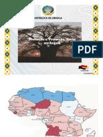 Angola.pdf