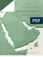 Reporte de Arabia Saudita Petroleo