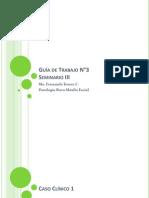 Guía de Trabajo N°3 Procesos Inflamatorios II