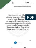 Lineamientos Transporte Ferroviario v1 0docx