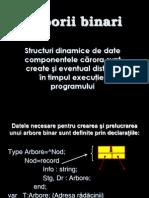 0 Prezentare Informatica Biciuc Elena