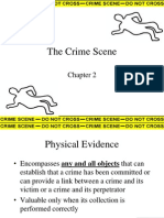 The Crime Scenee