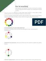 Teoria culorilor