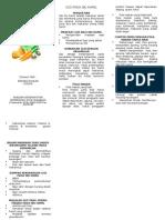 95136688 Leaflet Gizi Bumil