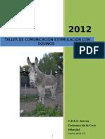 Programacion Taller Equinos