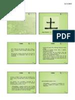 Padroesterra+Com+Fitos+6+Slides