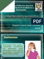 Catarro común (1)