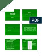 Anatomia Cortes Posições e Eixos, Introdução Ossos (1)