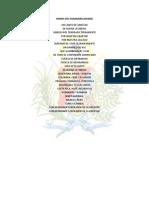 HIMNO DEL PANAMERICANISMO.docx