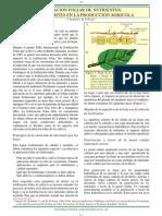 Aplicación foliar de nutrientes