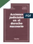 Acciones Judiciales en El Derecho Sucesorio PDF(2)