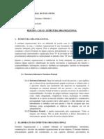 Osm i - Resumo - Estruturas Organizacionais