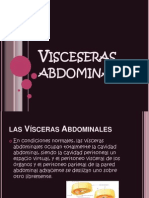 Lectura 26 Visceseras abdominales .pptx