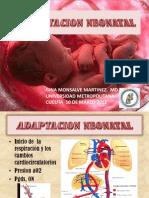 Adaptacion Neonatal